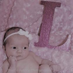 Bluff Country Photography - Southeast Minnesota - Lanesboro - Newborn Photos